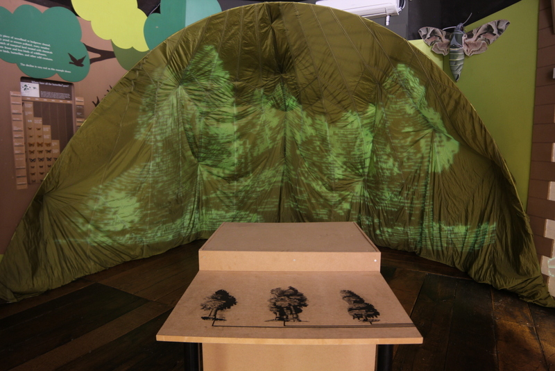 'Canopy' opening at Warwick Museum